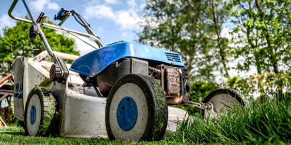 manutenzione di aree verdi