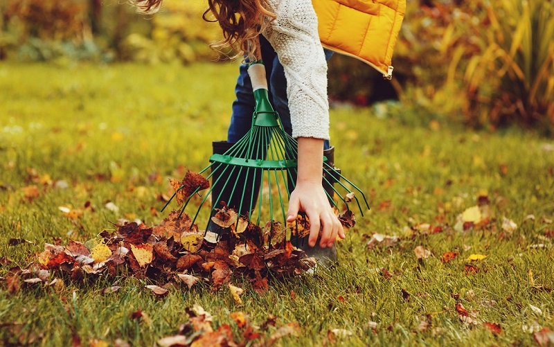 I 5 lavori da fare in giardino in settembre e ottobre