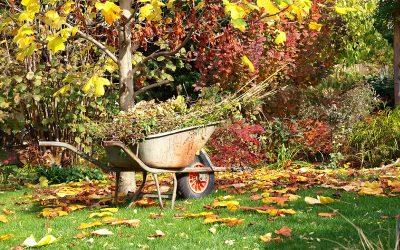 Autunno, i lavori in giardino