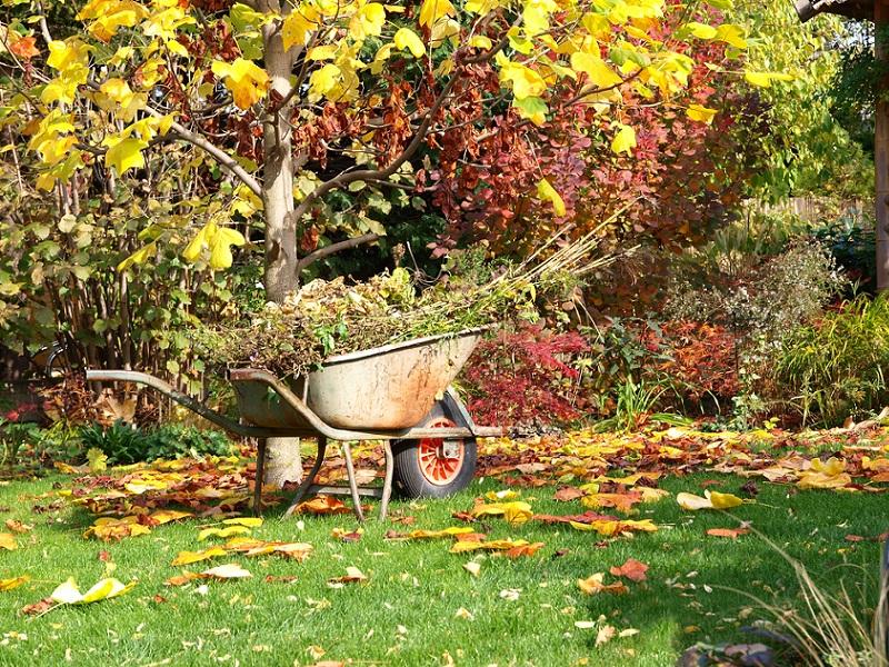 autunno lavori